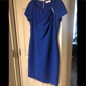 Calvin Klein Petite Dress